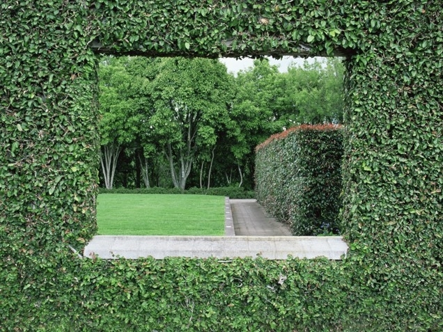 Source: http://www.lovethispic.com/image/59122/green-walls